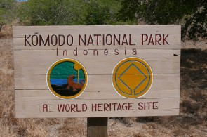 Komodo National Park : Into The Heart of The Dragons