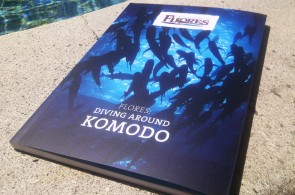 Flores: Diving Around Komodo