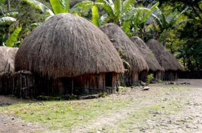 Baliem Valley : Home of the Dani's